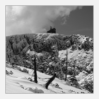 Sněžné jámy