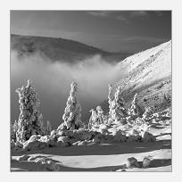 Zima v Kotelské rokli
