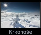 Krkono�e